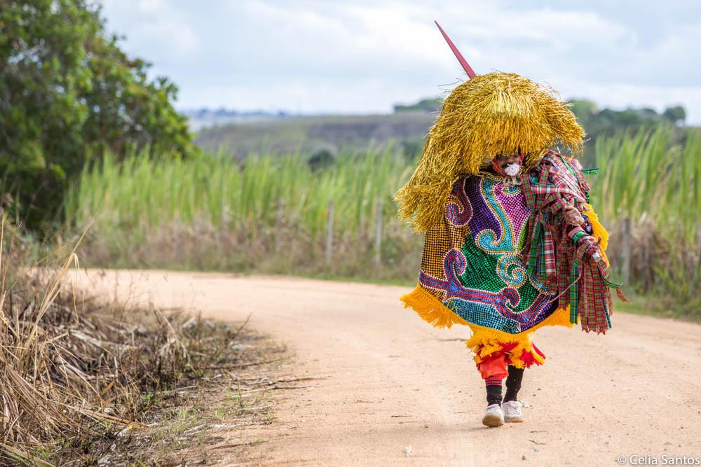 Maracatu Rural: uma das expressões brincantes da dança. (Foto: Celia Santos)