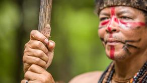Mais um dia pelo direito de ser indígena
