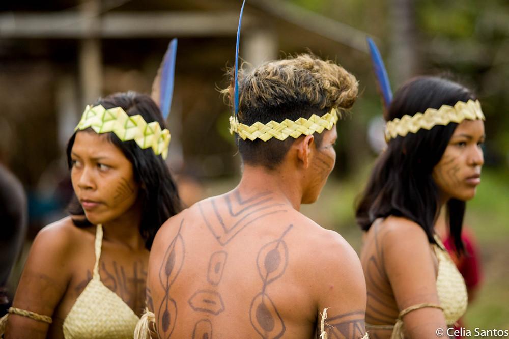 Reservas indígenas da Amazônia sentem ameaça com a decisão federal. (Foto: Celia Santos/Instituto Mpumalanga)