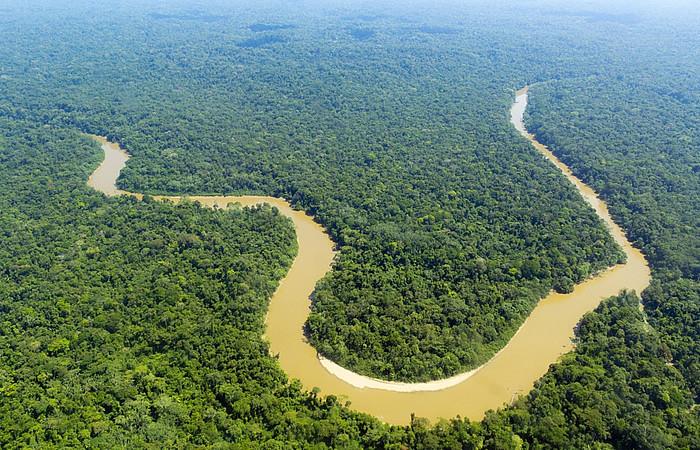 Curvas intensas e sedimentos às margens são características do Rio Purus (Foto: Reprodução/Shutterstock)