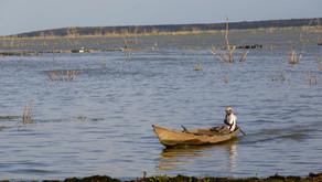 No dia mundial da água, uma homenagem ao Rio São Francisco