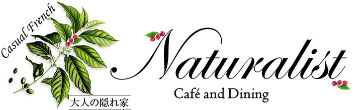 Naturalist_logo_for_38×18.jpg