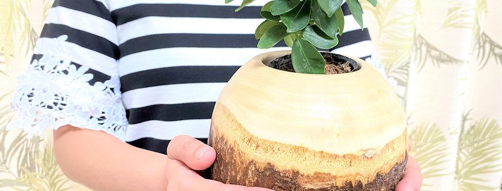 縦長フラワーポット・自然をそのまま(木製 樹皮 )水入可能