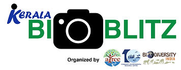 Logo_Try_3_1_crop.jpg