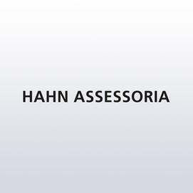 Hahn Assessoria
