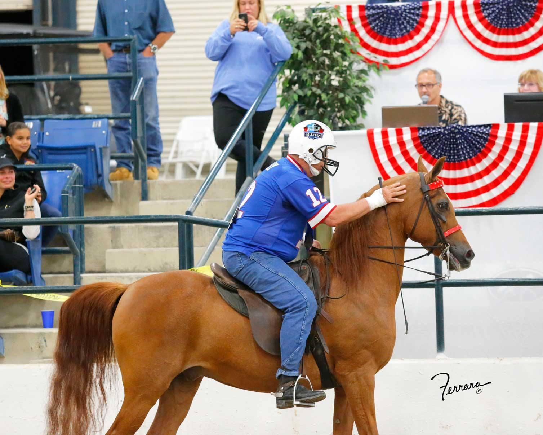 Trainer Equitation