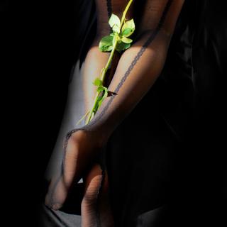 The Art of Sensual Beauty