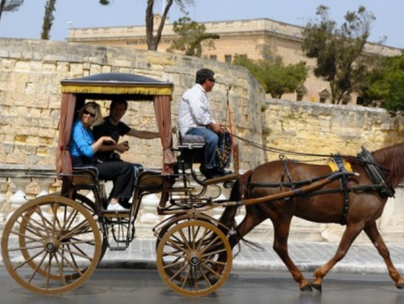 MSPCA Pushes For An End To Karozzini On Maltese Streets