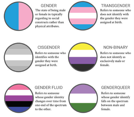 gender flags.jpg