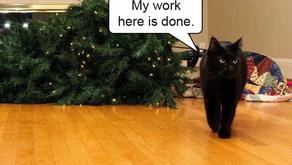 Holidays: Joyful or Stressful?