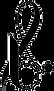 logo-siteweb fond transparent.png