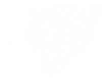 Jaguar Headwhite copy.png