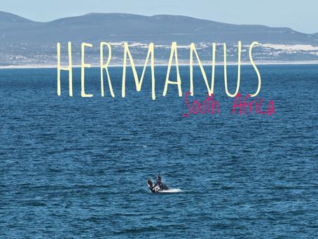 Afrique du Sud - Hermanus