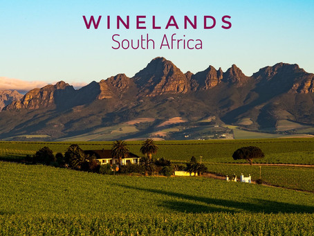 Afrique du Sud - Winelands