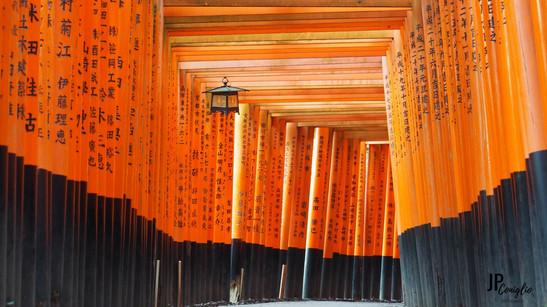 Les fameux Toris au Japon - Kyoto