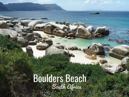 Afrique du Sud - Boulders Beach