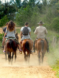Balade à cheval - Cuba