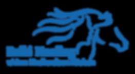 ReikiHealing_Ann_Logo_Blå.png