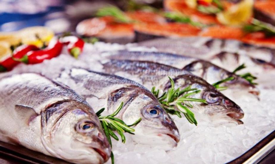 peixaria_refrigeração.jpg