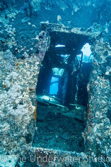 door of a ship wreck
