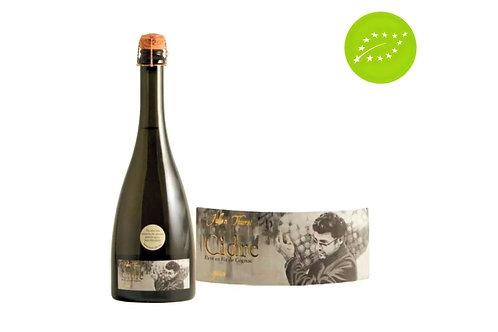 Cidre Esquisse - Domaine Julien Thurel - Loiret