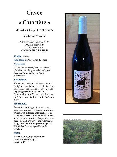 Caractère - Domaine Vin & Pic - Côtes du Forez