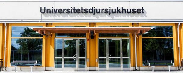 universitetsdjursjukhuset-ultuna-1069988