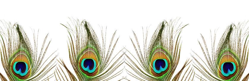 AdobeStock_108502372.jpeg