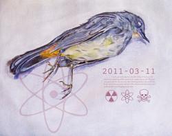 Fukushima bird 2