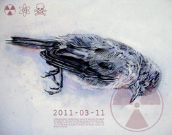 Fukushima bird 1