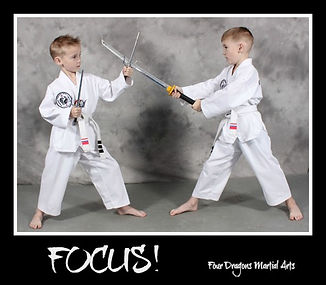 twinsfocus.jpg