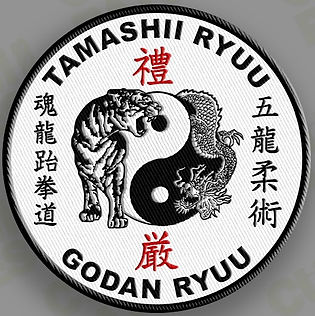 Martial Arts School Watkins Horseheads.Tamashii Ryuu marital arts system in the Finger Lakes of New York. Karate, taekwondo, jujitsu, arnis, cardio.