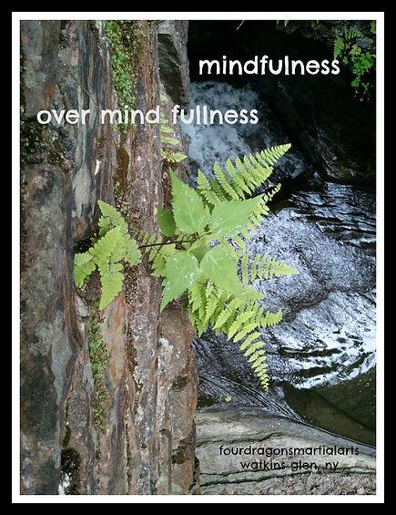 tamashii-mindulness. self defense, confidence, kindness, marital arts, black belt training