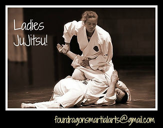 Martial Arts School Watkins Horseheads Self defense for women. Jujitsu and taekwondo.