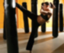 Fitness, self defense, conditioning, boxing, cardio classes in watkins Glen