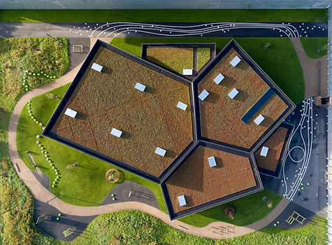 Roof and landscape, Multisports Hall in Copenhagen