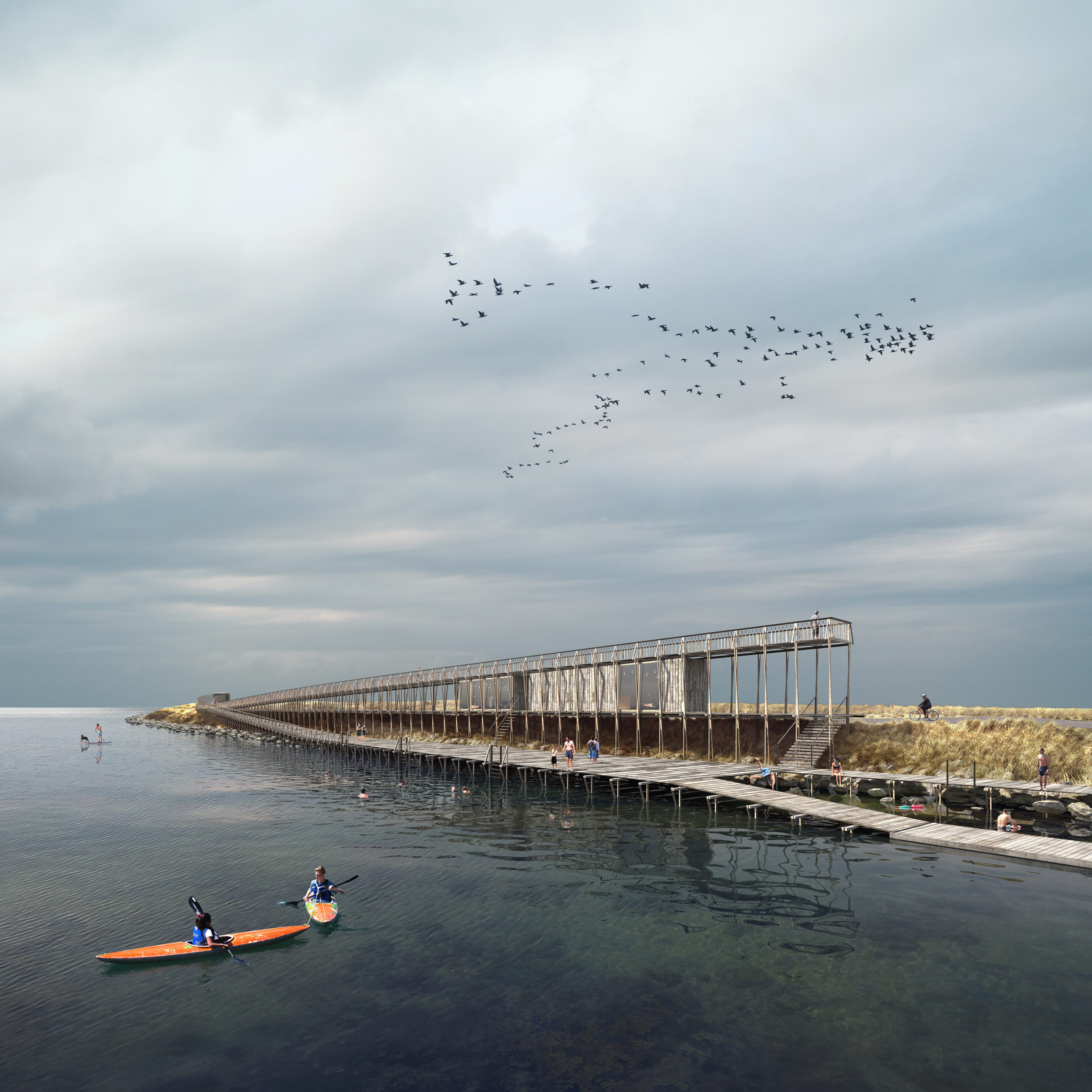 Competition entry - Naturpark Amager