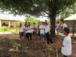 Projeto Ecoar178