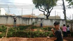 Projeto Ecoar106