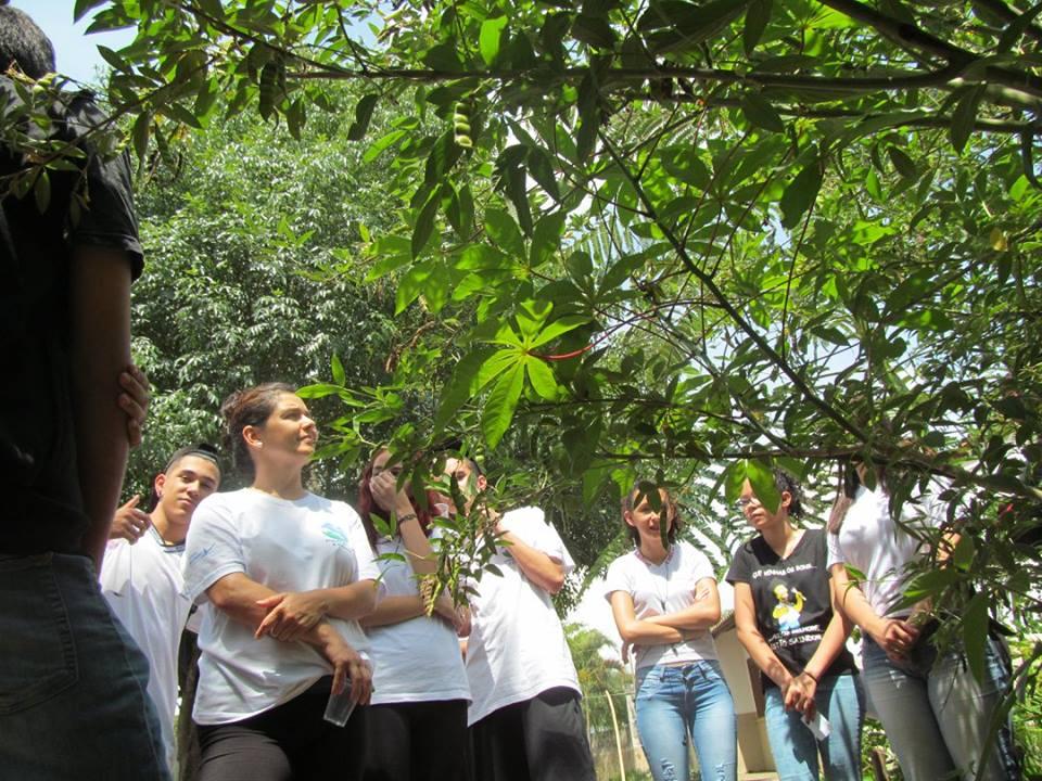 Projeto Ecoar184