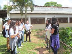 Projeto Ecoar179