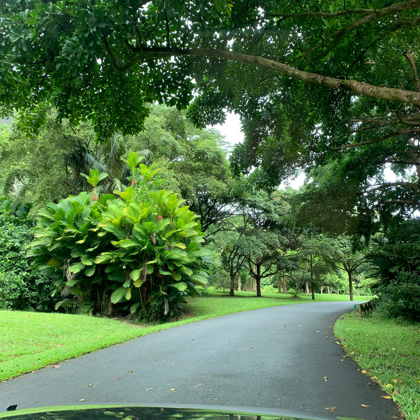 Ho´omaluhia Botanischer Garten
