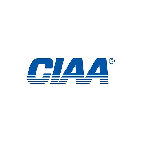 CIAA Bands