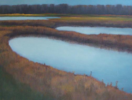 Montezuma Marsh