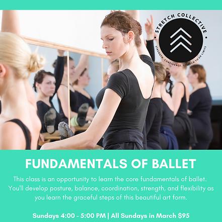 Adult Ballet (2).png