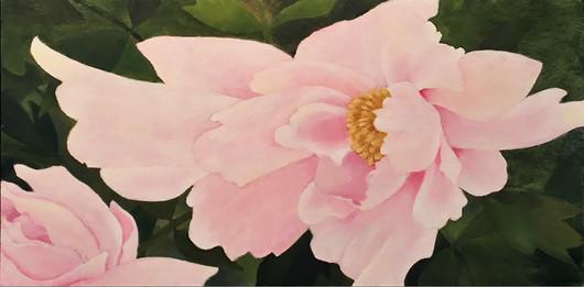Pale Pink Peonies.jpg