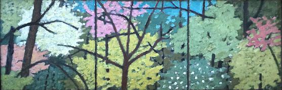 Spring Tree Triptych
