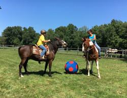 HorseSoccer