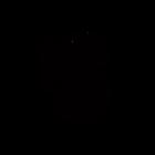 Superflu_logo_noir.png
