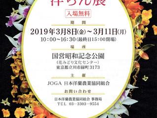 第73回洋らん展のお知らせ(国営昭和記念公園・東京都立川市)